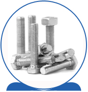 Alloy 2507 Super Duplex Stainless Steel Fasteners Bolts, Nuts, Washers, Screws
